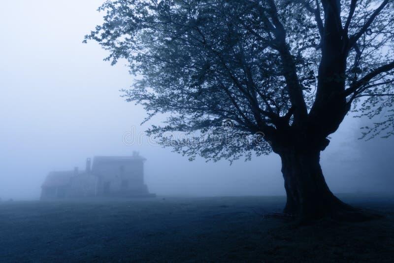 Verschrikkingshuis in het bos bij nacht royalty-vrije stock foto