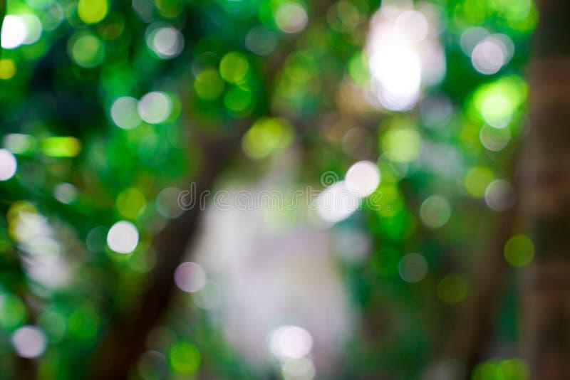 Verse aard groene onscherp en bokeh achtergrond royalty-vrije stock fotografie