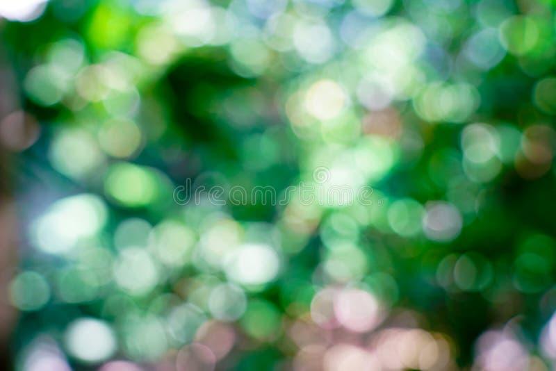 Verse aard groene onscherp en bokeh achtergrond stock foto's