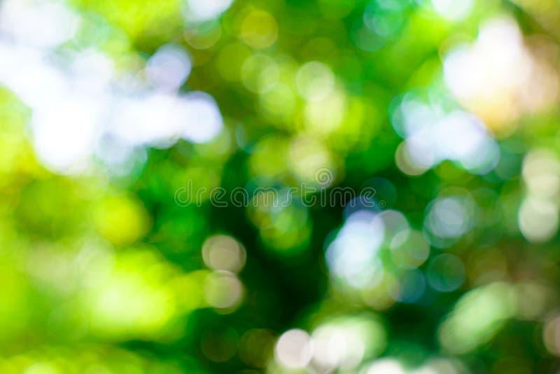 Verse aard groene onscherp en bokeh achtergrond royalty-vrije stock foto