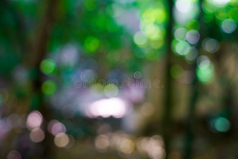 Verse aard groene onscherp en bokeh achtergrond royalty-vrije stock afbeelding