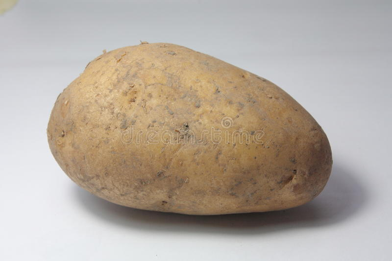 Verse Aardappel van Landbouwbedrijf stock afbeeldingen