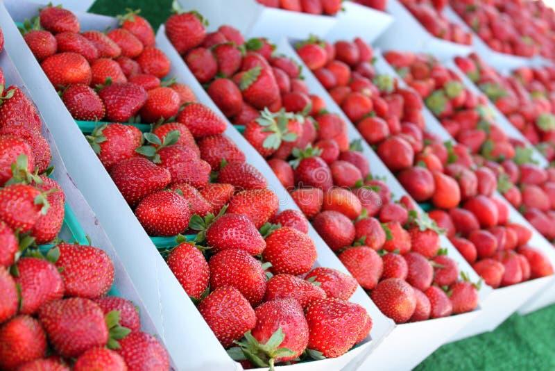 Verse aardbeien bij landbouwersmarkt stock foto