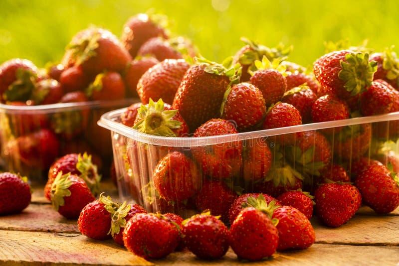 Verse aardbeien voor verkoop in plastic dozen, geschoten close-up stock afbeeldingen