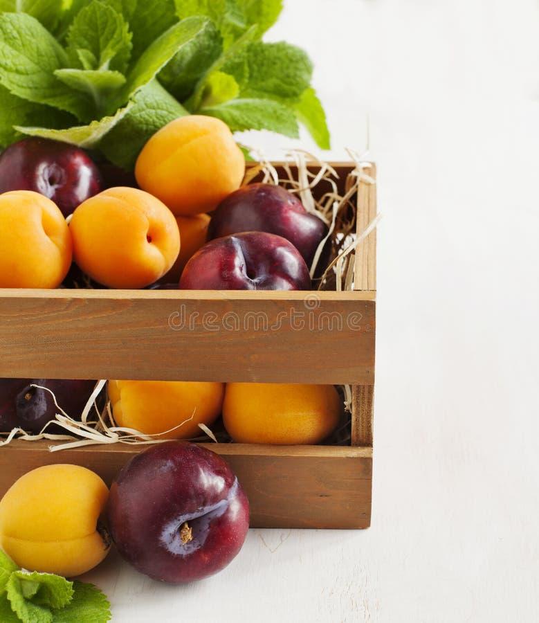 Verse abrikozen en pruimen in houten doos stock fotografie