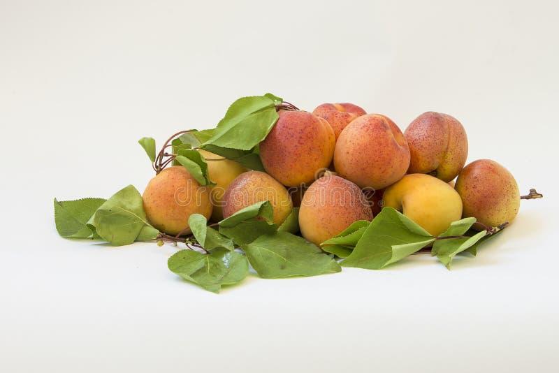 Verse abrikozen met bladeren op witte achtergrond stock fotografie