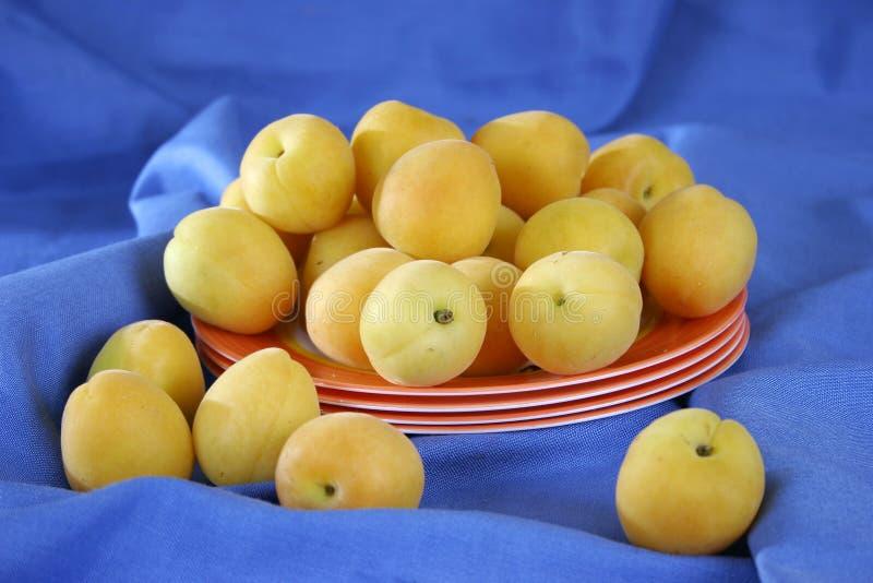 Verse abrikozen op blauw stock fotografie