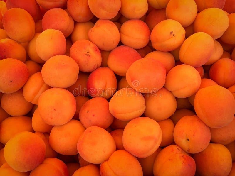 Verse abrikozen op een markt royalty-vrije stock foto's