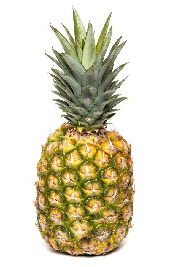 Verse ananas royalty-vrije stock foto
