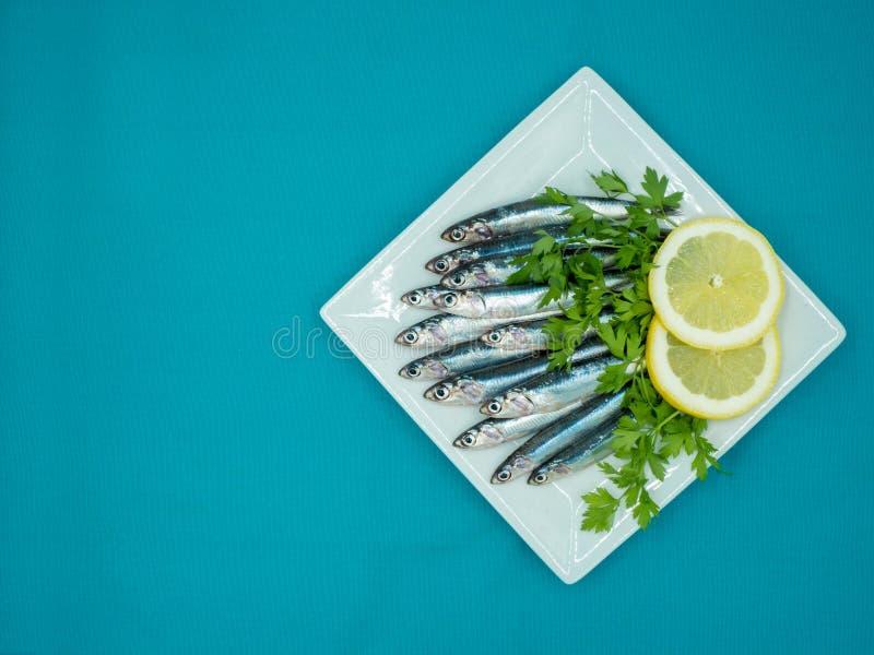 Verse ansjovissen in een plaat op een blauwe achtergrond royalty-vrije stock foto's