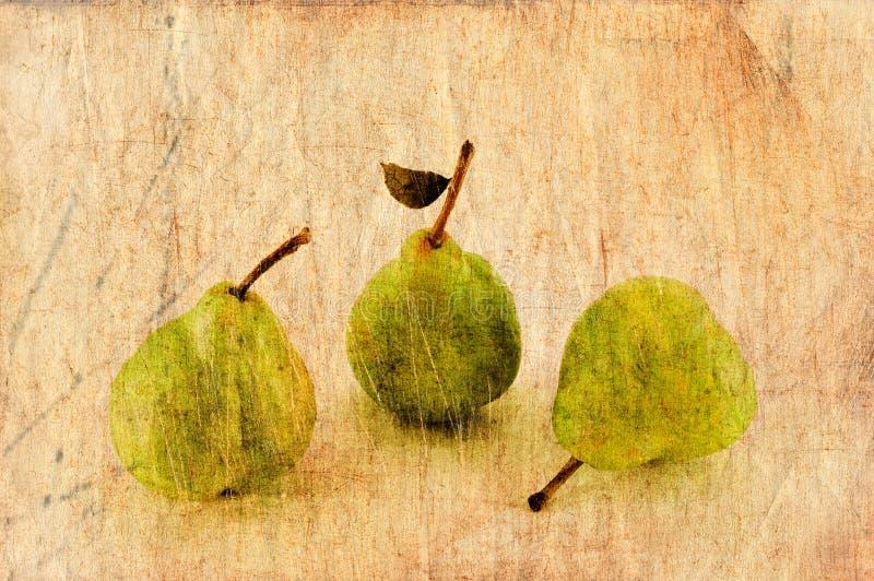 Verse appel en peren in grunge en retro stijl. stock illustratie