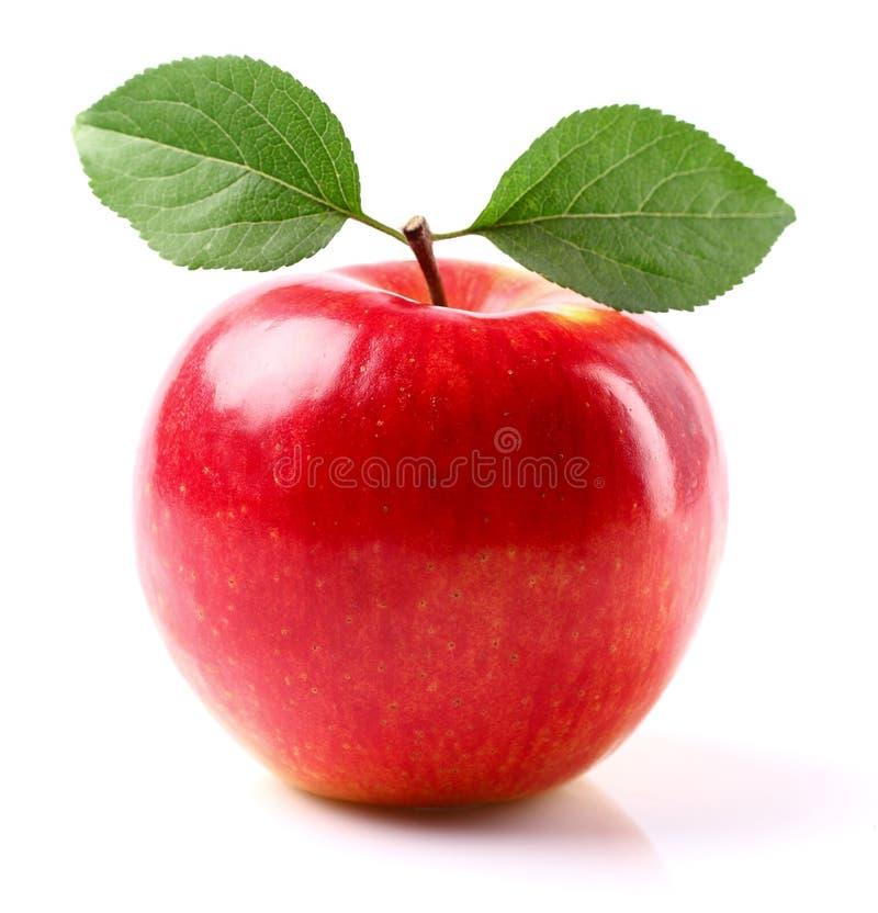 Verse appel met bladeren stock foto