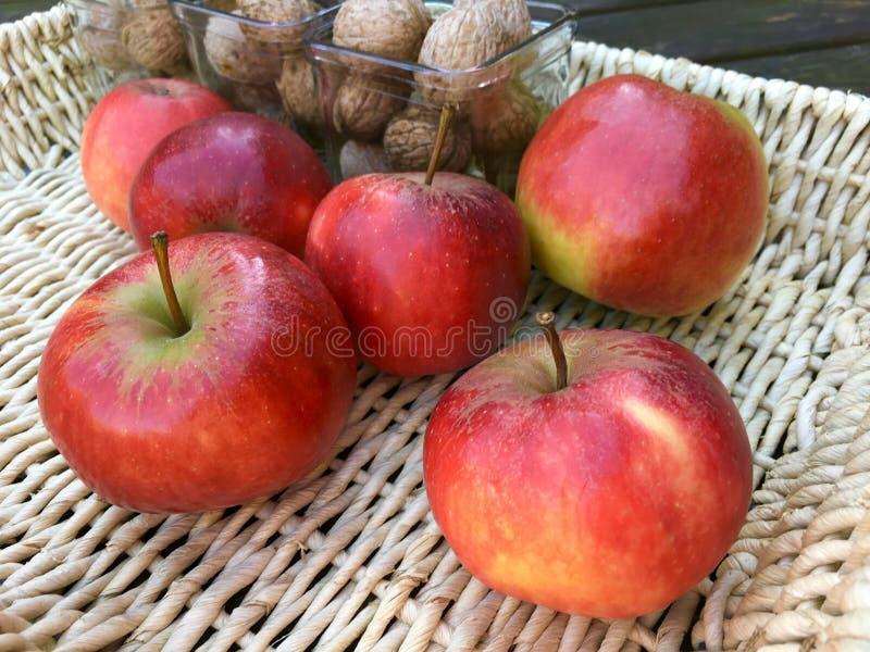 Verse appelen en okkernoten royalty-vrije stock fotografie