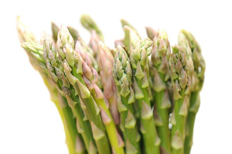 Download Verse asperge stock foto. Afbeelding bestaande uit groen - 29511438