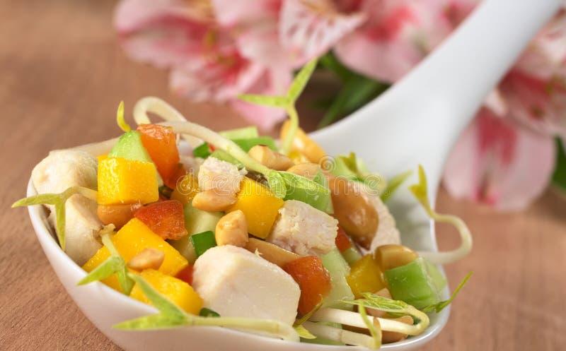 Verse Aziatische Salade met Kip en Pinda's royalty-vrije stock afbeeldingen