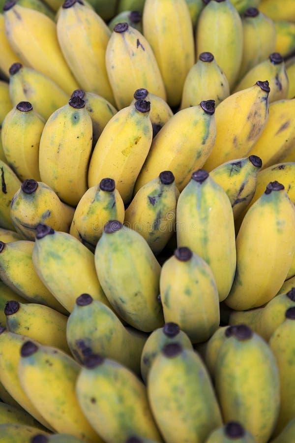 Verse bananen bij de markt stock afbeeldingen