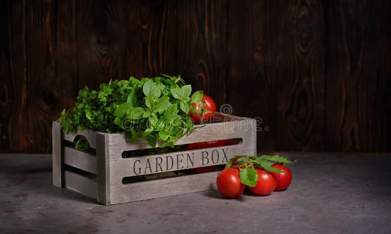 Verse basilicumbladeren met tomaten in een houten doos op de steenachtergrond royalty-vrije stock afbeeldingen
