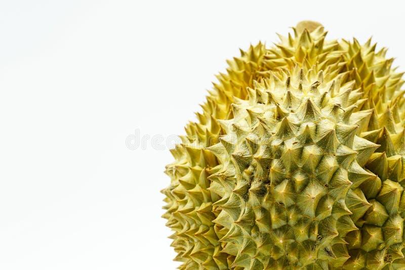 Verse Besnoeiing Monthong Durian op kleurrijke achtergrond, close-upmening van Durian, Monthong Durian Monleren riem Mooie Durian royalty-vrije stock foto's