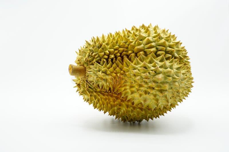Verse Besnoeiing Monthong Durian op witte achtergrond, close-upmening van Durian, Monthong Durian Monleren riem Mooie Durian Duri royalty-vrije stock fotografie