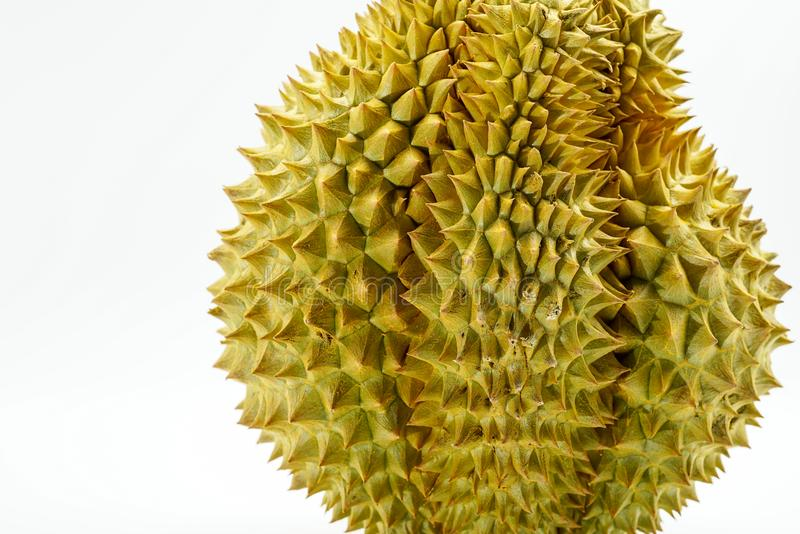 Verse Besnoeiing Monthong Durian op witte achtergrond, close-upmening van Durian, Monthong Durian Monleren riem Mooie Durian Duri stock afbeeldingen