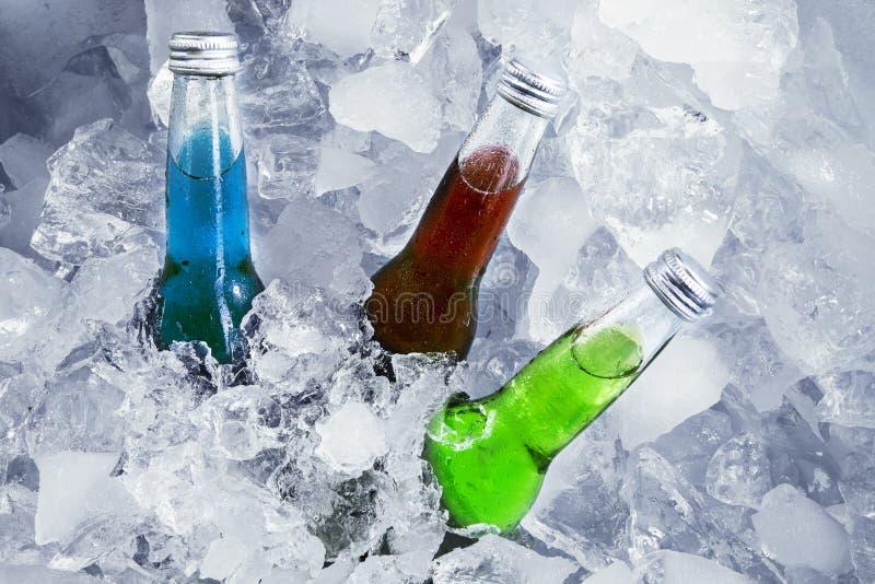 Verse bieren in het ijsblokje royalty-vrije stock foto's