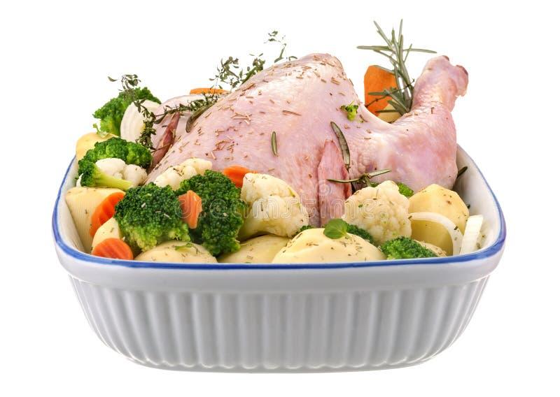 Verse binnenlandse kip stock foto