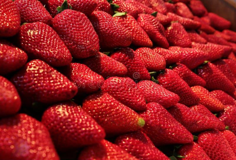 Verse bioaardbeien stock afbeelding