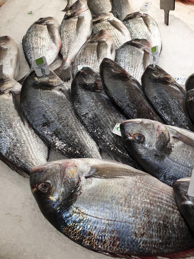 Verse Biovissen bij supermarkt stock afbeelding