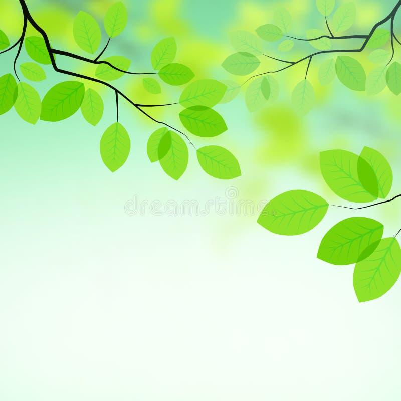Verse bladerenAchtergrond royalty-vrije illustratie