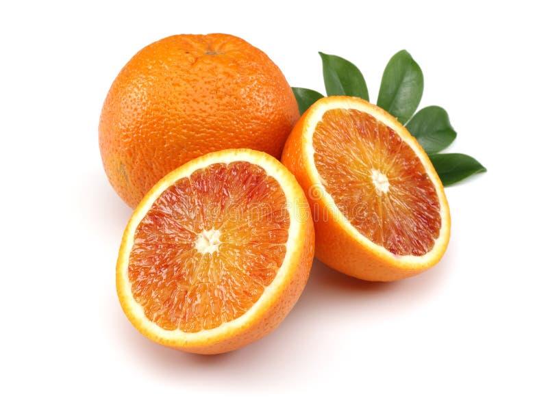 Verse Bloedsinaasappel stock afbeelding