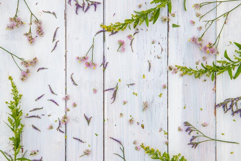 Verse bloemen op witte houten achtergrond royalty-vrije stock foto's