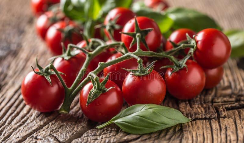 Verse bos van rijpe tomaten met basilicumbladeren op oude eiken lijst stock foto's