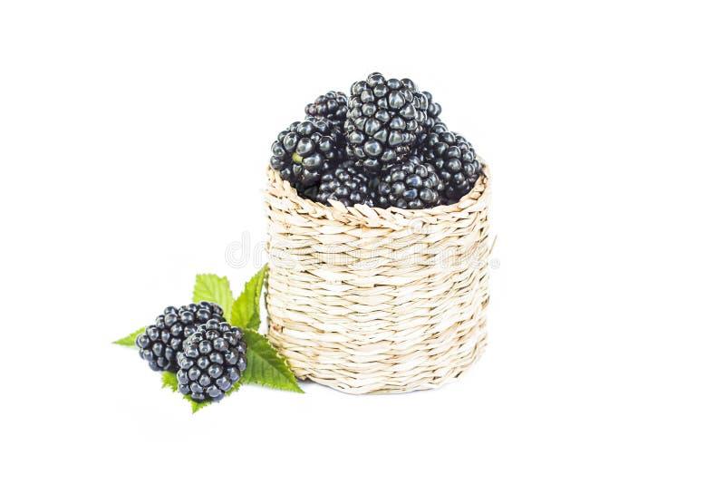 Verse braambes in houten rieten mand, organische zoete zwarte bes met blad, gezond dessertvoedsel, geïsoleerde close-up, stock afbeeldingen