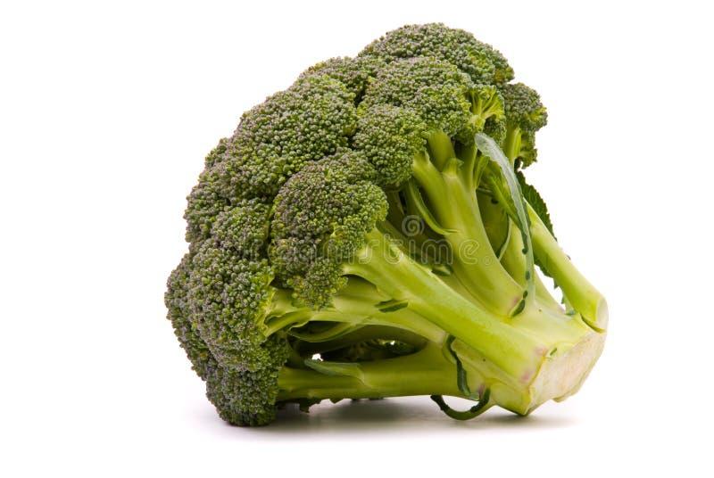 Verse broccoli stock fotografie