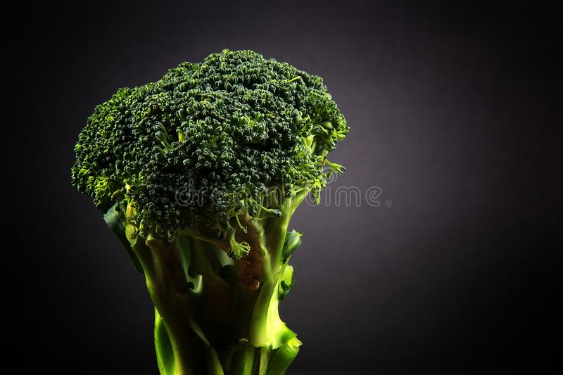 Verse broccoli met een zwarte achtergrond stock foto