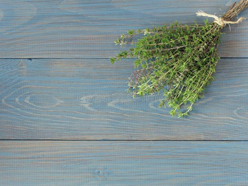 Verse bundel van thyme stock afbeeldingen
