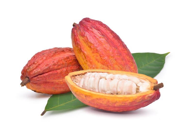 Verse cacaovruchten met half gesneden en groen blad royalty-vrije stock afbeelding