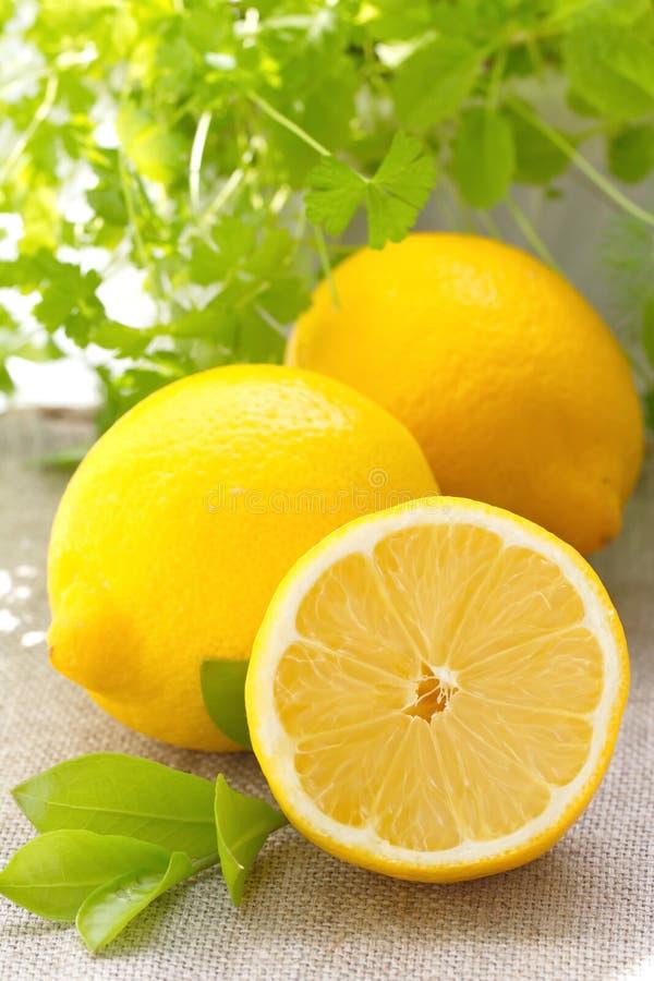 Download Verse citroen stock afbeelding. Afbeelding bestaande uit landbouw - 54081139