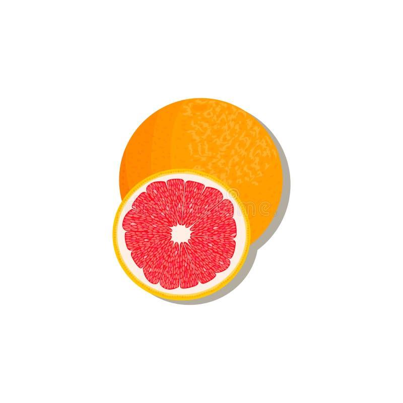 Verse Citrusvrucht sinaasappel, citroen, kalk, bergamot, mandarijn en grapefruit met bladeren en plakken royalty-vrije stock foto