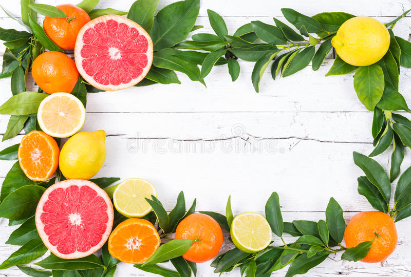 Verse citrusvruchten royalty-vrije stock foto