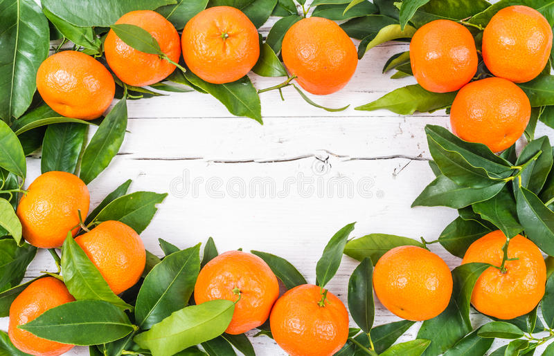 Verse citrusvruchten stock fotografie