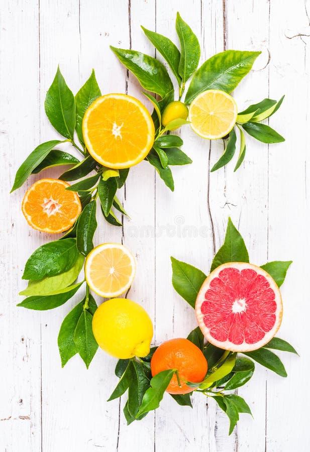 Verse citrusvruchten royalty-vrije stock afbeelding