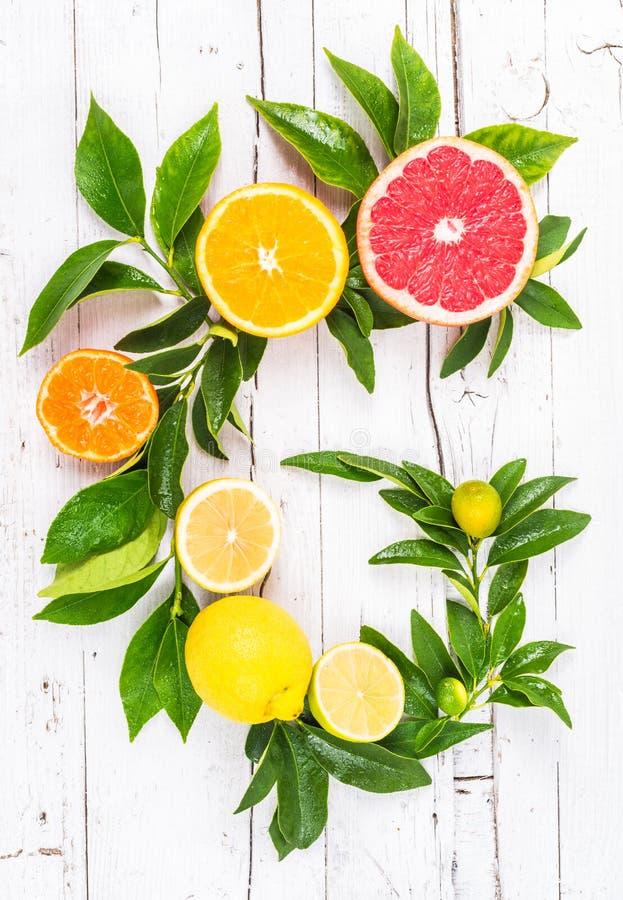 Verse citrusvruchten royalty-vrije stock foto's