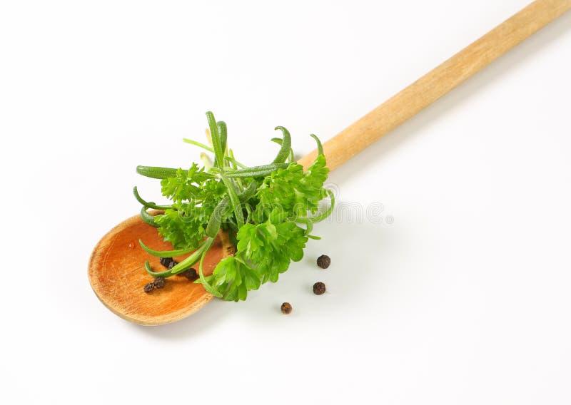 Verse culinaire kruiden en zwarte peperbollen stock afbeeldingen