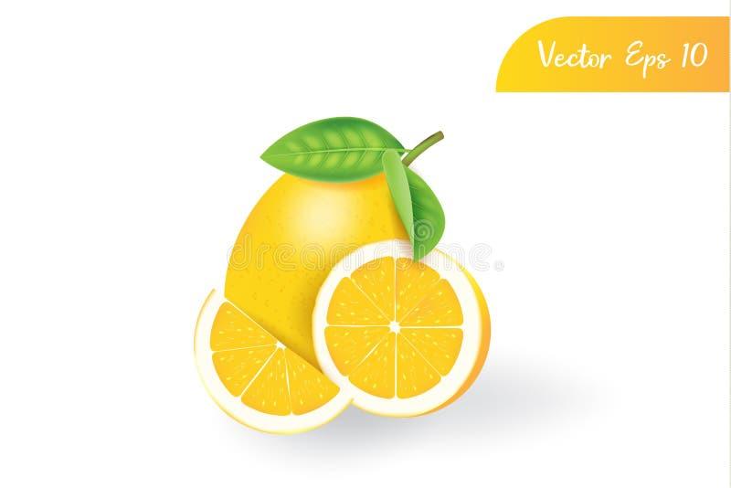 Verse 3d realistische citroen op ge?soleerde achtergrond royalty-vrije illustratie