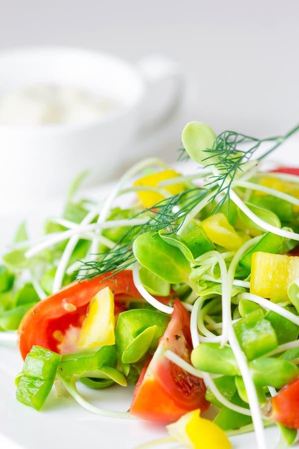 Verse de lentesalade stock afbeelding