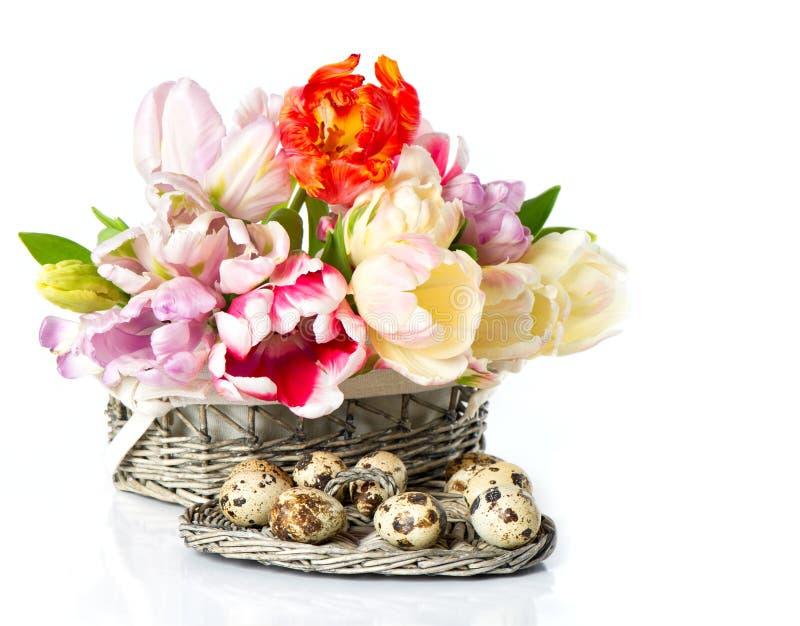 Verse de lentetulpen in de mand met paaseieren royalty-vrije stock afbeelding