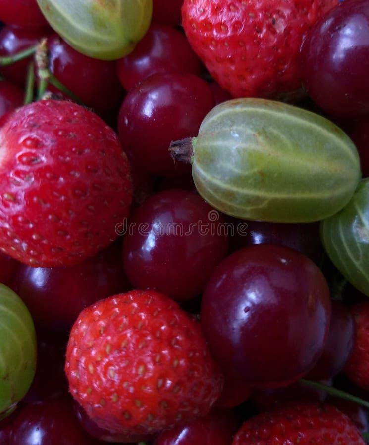 Verse de Zomerbessen, Gezond voedsel stock foto