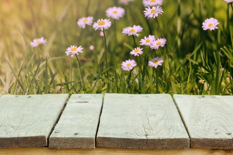 Verse de zomerbloemen, gras en zonlicht, en houten bevloering stock afbeelding
