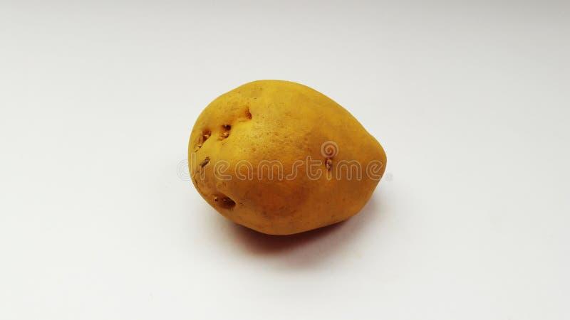 Verse die aardappel op wit achtergrondclose-upbeeld wordt geïsoleerd stock afbeelding